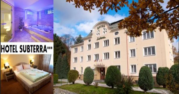 Příroda Krušných hor a lázně - Hotel Subterra***  4 dny s chutnou polopenzí a bohatým wellness pro 2. Pouze za 3998 Kč až do konce srpna!